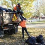 растительный мусор в городе
