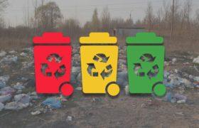 Ситуация с раздельным мусором. Оплата за вывоз