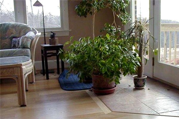 как создать уют в доме, фото к статье №1